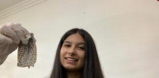 Rebecca Veloso