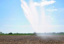 Paraná ganha competitividade no agro